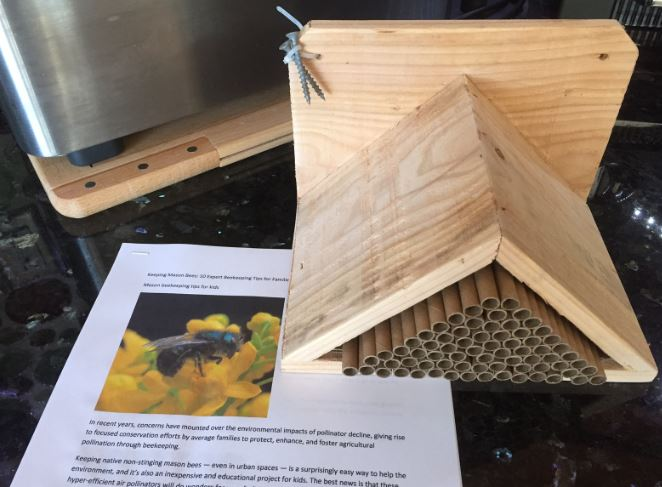 Newly built mason bee house