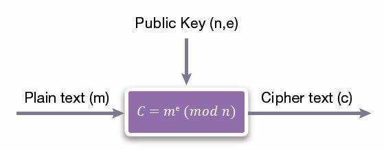RSA-Encryption